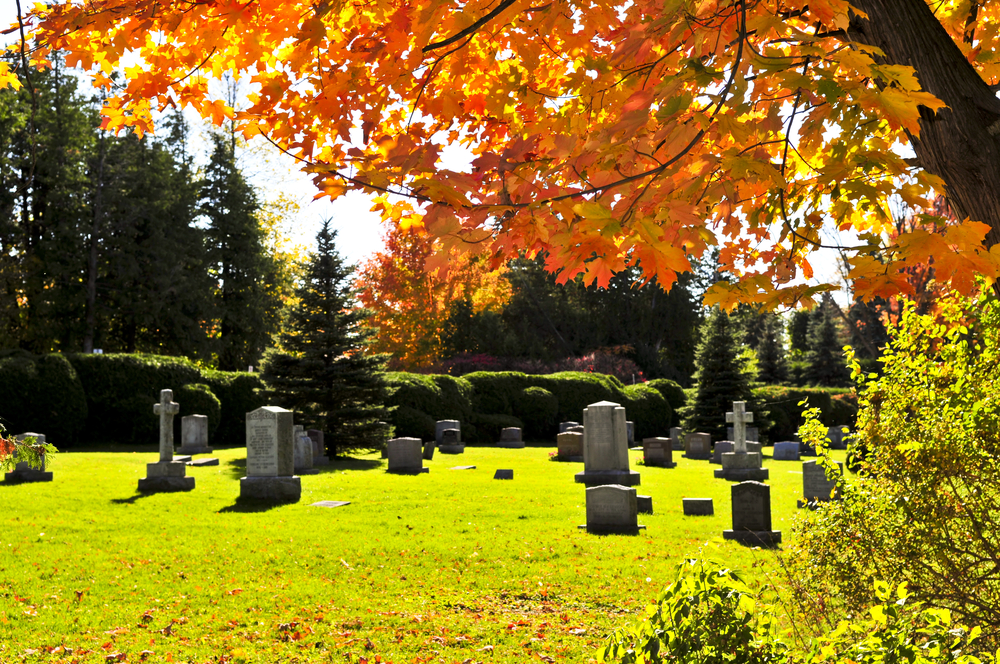 DIVIDING THE BURIAL PLOT AND OTHER  FORGOTTEN ASSETS IN DIVORCE
